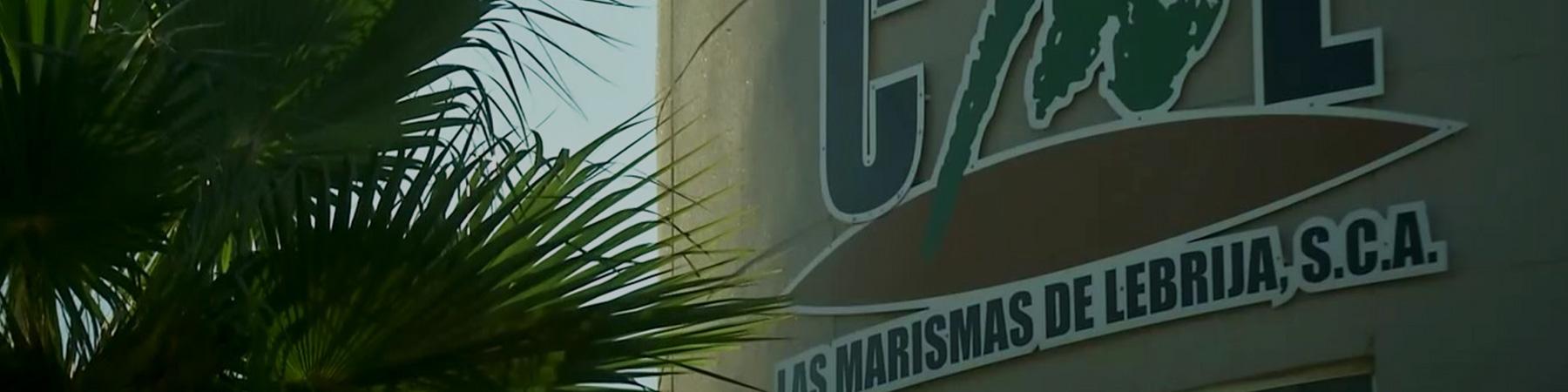 servicios Administrativos - Servicios Las Marismas de Lebrija