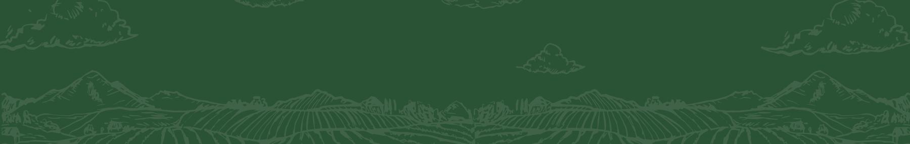 Productos Hortícolas: Catálogo de productos - Productos Las Marismas de Lebrija