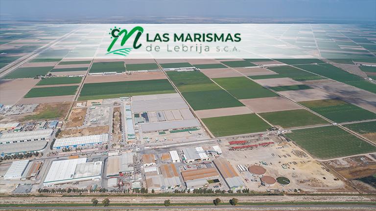 Mercado derechos de emisión de CO2: Las Marismas de Lebrija SCA denuncia públicamente el abusivo incremento de sus precios