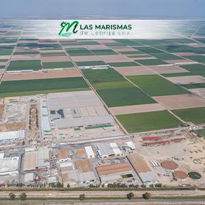 La evolución del mercado de derechos de emisión dificulta la situación de nuestra fábrica de tomate
