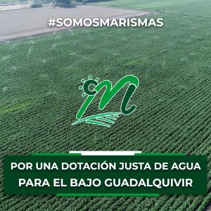 El Sector B-XII reclama una mayor dotación de agua para sus cultivos a la Confederación Hidrográfica del Guadalquivir