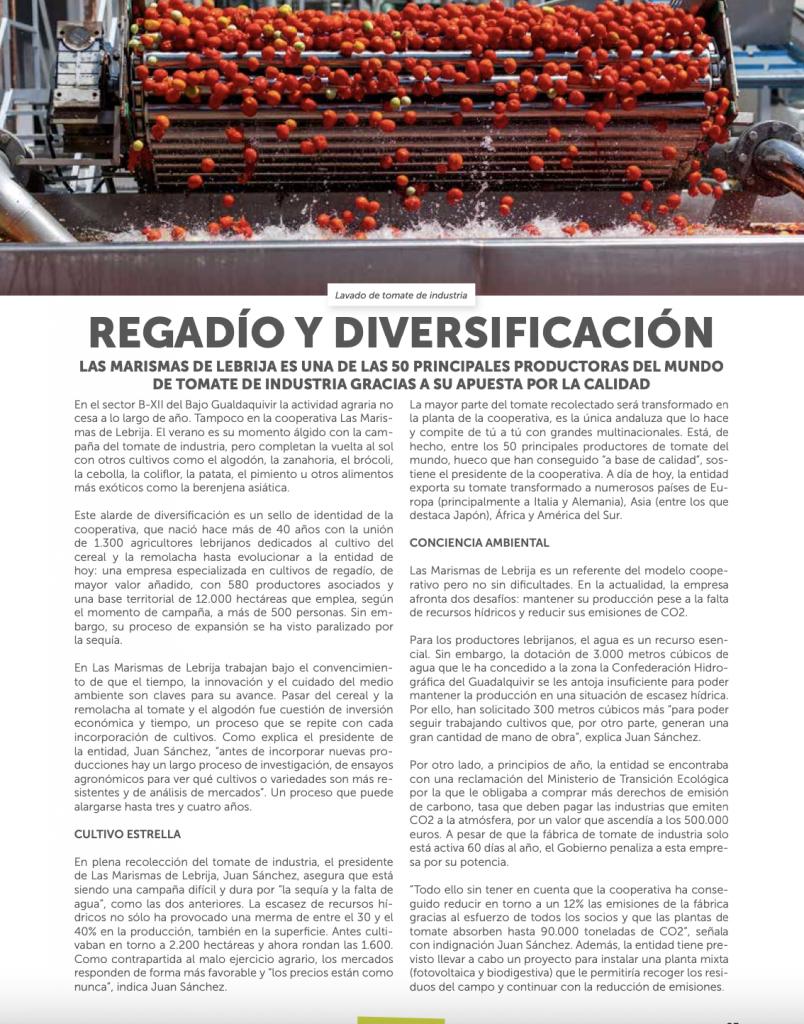 Reportaje Regadío y Diversificación de Las Marismas de Lebrija SCA - Revista Tierra Cooperativa
